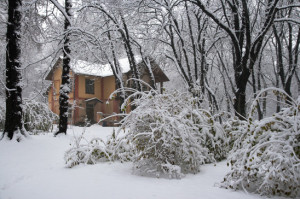 get a home inspection this winter